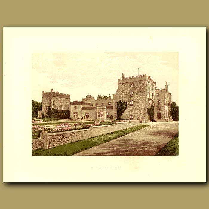 Antique print. Muncaster Castle: Lord Muncaster