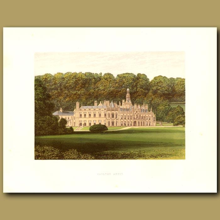 Antique print. Shelton Abbey: Earl of Wicklow