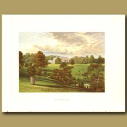 Ashcombe Park: Sneyd Family