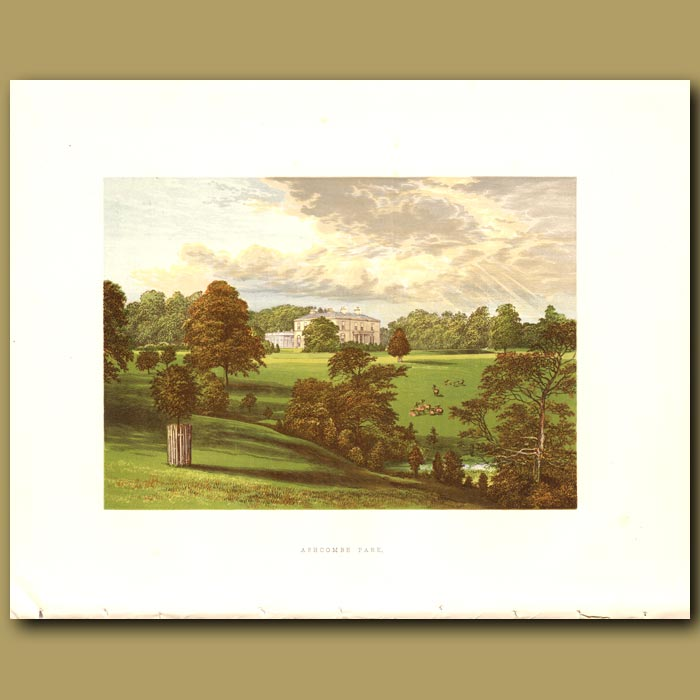 Antique print. Ashcombe Park: Sneyd Family