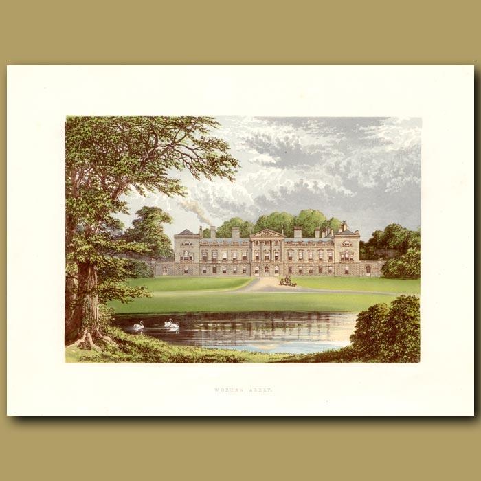 Antique print. Woburn Abbey