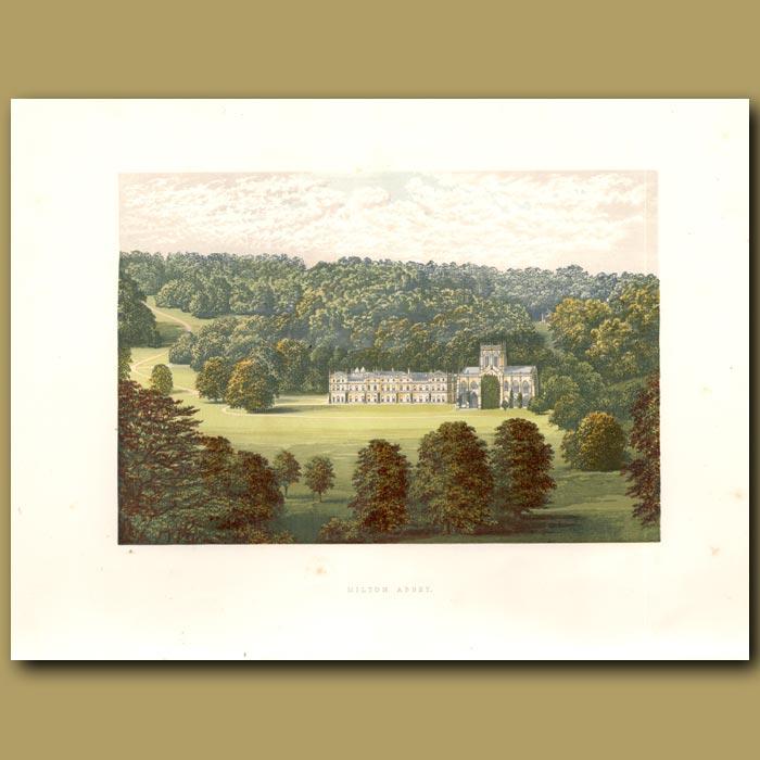 Antique print. Milton Abbey